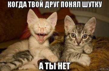 http://sg.uploads.ru/t/L4tko.jpg