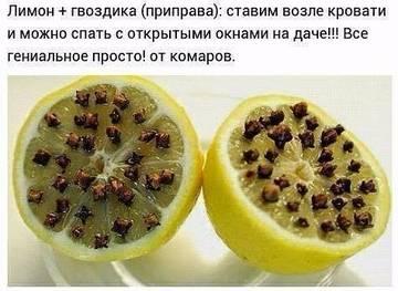 http://sg.uploads.ru/t/LKRnc.jpg