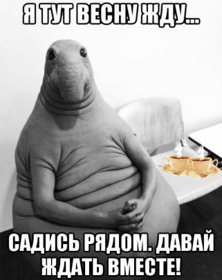 http://sg.uploads.ru/t/LZ0HE.jpg