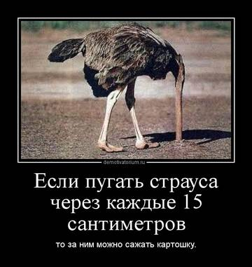 http://sg.uploads.ru/t/LZVWe.jpg