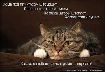 http://sg.uploads.ru/t/LlJ4p.jpg