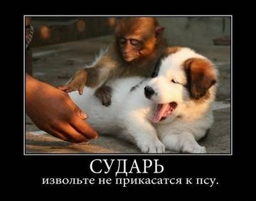 http://sg.uploads.ru/t/M7HEe.jpg