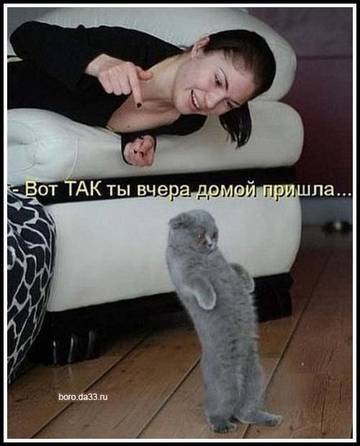 http://sg.uploads.ru/t/MYx9r.jpg