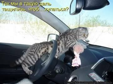 http://sg.uploads.ru/t/MroVh.jpg