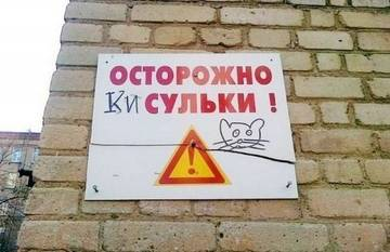 http://sg.uploads.ru/t/MtEHw.jpg
