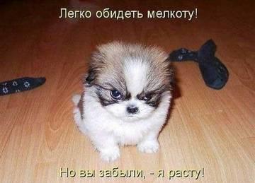 http://sg.uploads.ru/t/MvD6j.jpg