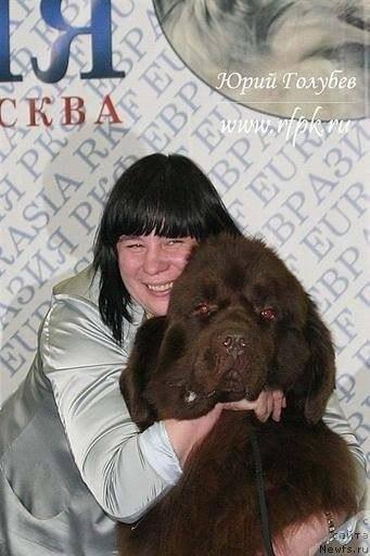 http://sg.uploads.ru/t/N3vge.jpg