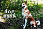 http://sg.uploads.ru/t/NbXpD.jpg