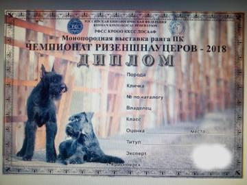 http://sg.uploads.ru/t/O5m3v.jpg