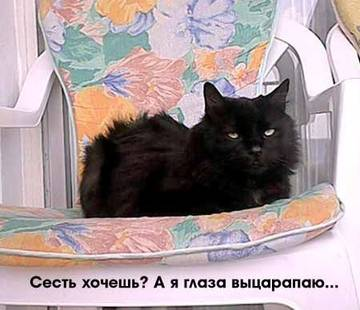 http://sg.uploads.ru/t/OQITx.jpg