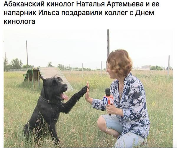 http://sg.uploads.ru/t/P9cEt.jpg