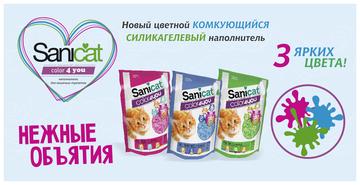 http://sg.uploads.ru/t/PF2KQ.png
