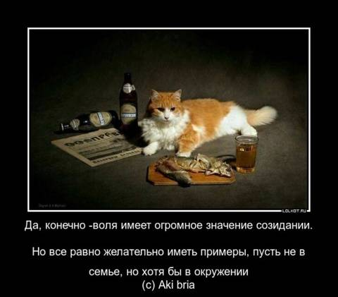 http://sg.uploads.ru/t/PNUoZ.jpg