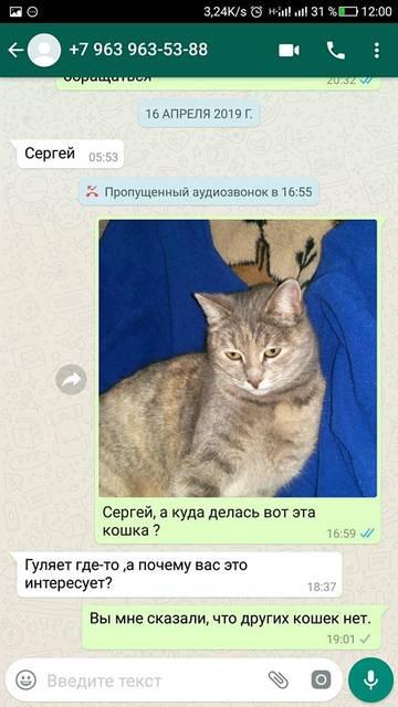 http://sg.uploads.ru/t/PSNmA.jpg