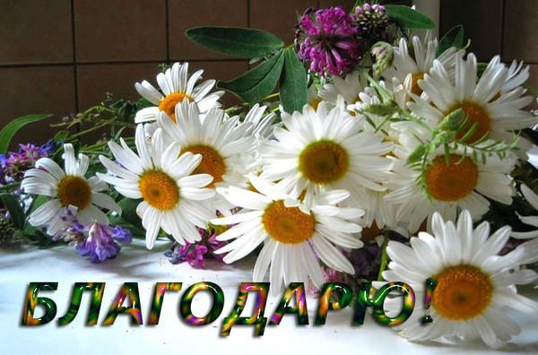 http://sg.uploads.ru/t/PiXkT.jpg