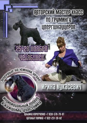 http://sg.uploads.ru/t/Q1Yic.jpg