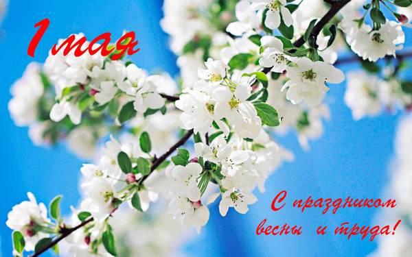 http://sg.uploads.ru/t/QHM7v.jpg