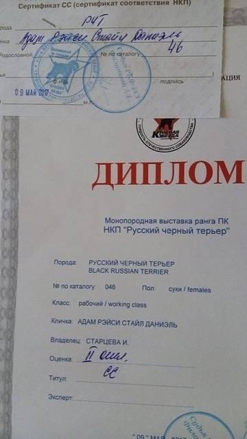 http://sg.uploads.ru/t/QJmFg.jpg