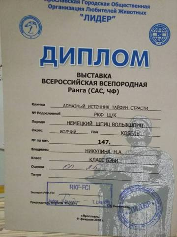 http://sg.uploads.ru/t/QTijv.jpg