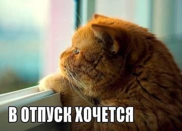 http://sg.uploads.ru/t/Qc34u.jpg