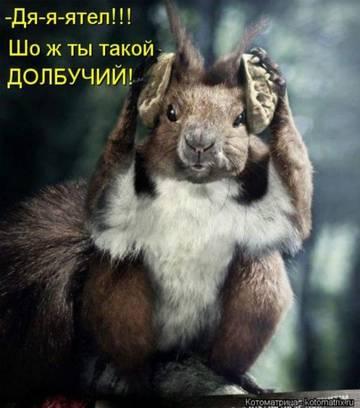 http://sg.uploads.ru/t/QtqVD.jpg