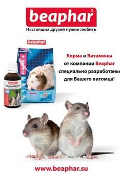 http://sg.uploads.ru/t/QwVRC.jpg