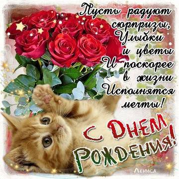 http://sg.uploads.ru/t/QzbnK.jpg
