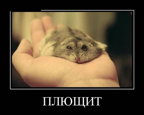 http://sg.uploads.ru/t/R8IwM.jpg