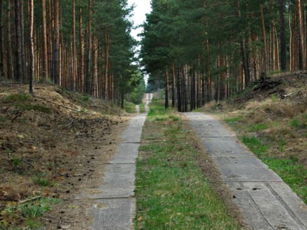 http://sg.uploads.ru/t/RBkKW.jpg