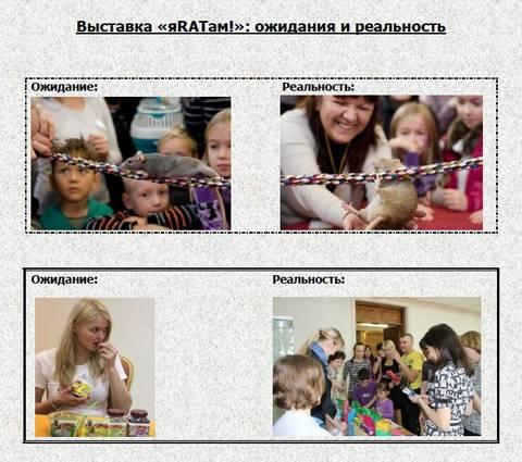 http://sg.uploads.ru/t/RU7Am.jpg