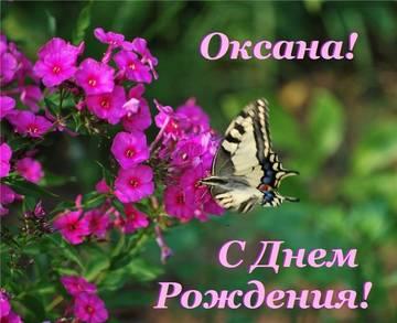 http://sg.uploads.ru/t/SLqPl.jpg