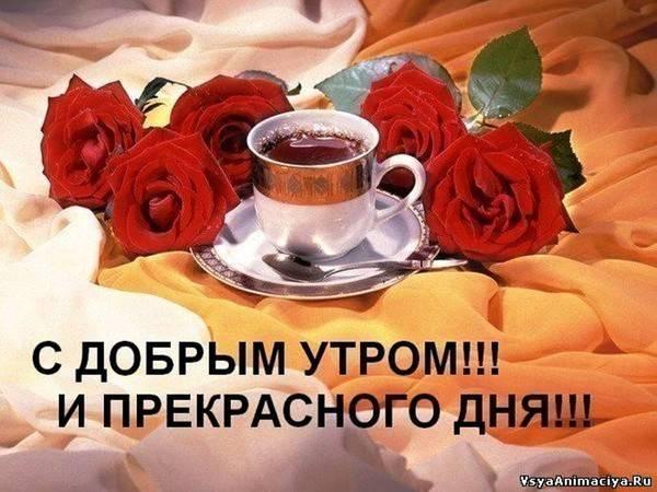 http://sg.uploads.ru/t/SY1WM.jpg