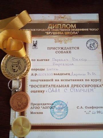 http://sg.uploads.ru/t/StZA9.jpg