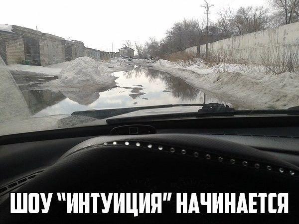 http://sg.uploads.ru/t/Tbn0P.jpg