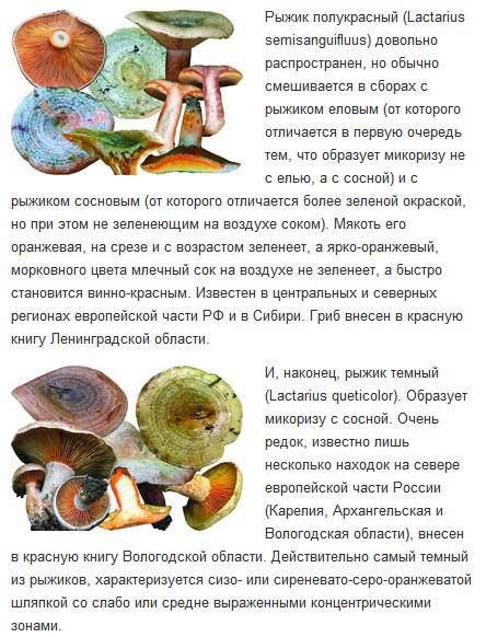 http://sg.uploads.ru/t/Tgl8u.jpg