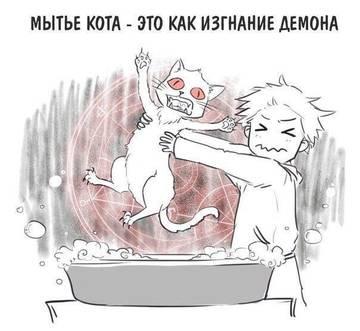 http://sg.uploads.ru/t/TlqIF.jpg