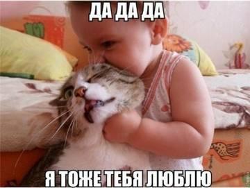 http://sg.uploads.ru/t/U9e0T.jpg