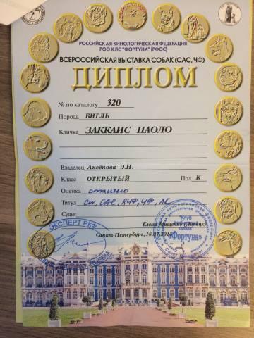 http://sg.uploads.ru/t/UTBAQ.jpg