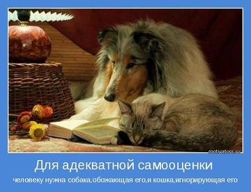 http://sg.uploads.ru/t/UfvOE.jpg