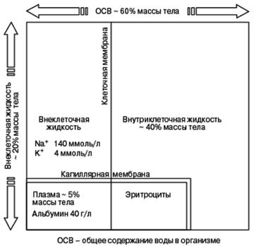 http://sg.uploads.ru/t/WzoUX.png
