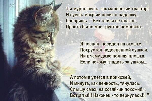 http://sg.uploads.ru/t/X8cBT.jpg