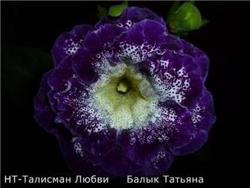 http://sg.uploads.ru/t/XY1Ge.jpg