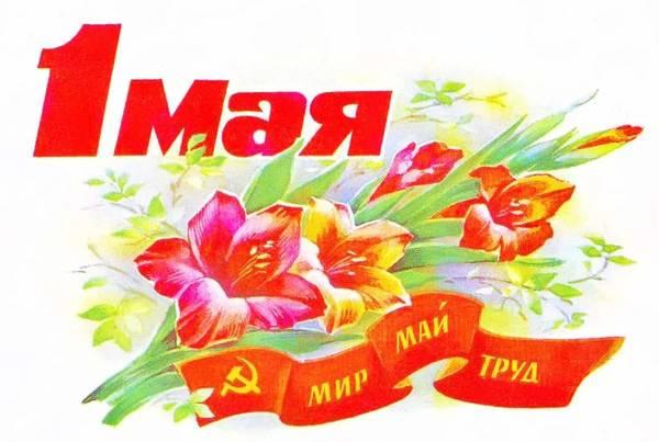 http://sg.uploads.ru/t/XZ3kD.jpg
