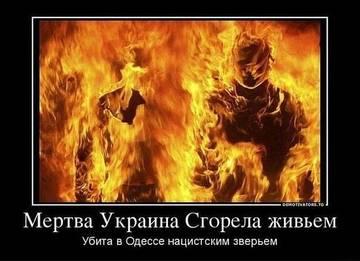 http://sg.uploads.ru/t/XxBVz.jpg