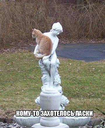 http://sg.uploads.ru/t/Y2rPN.jpg