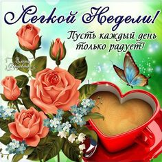 http://sg.uploads.ru/t/YB0bq.jpg