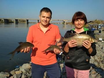 http://sg.uploads.ru/t/YB3Rm.jpg