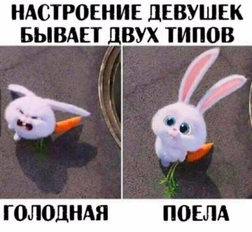 http://sg.uploads.ru/t/YONIA.jpg