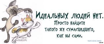 http://sg.uploads.ru/t/YVXwT.jpg