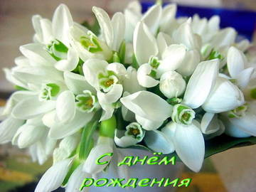 http://sg.uploads.ru/t/YhJ73.jpg